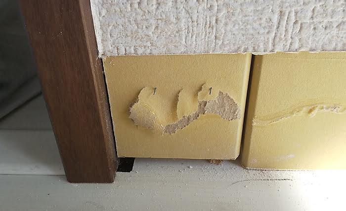 巾木を剥がした際の裏側の石膏ボード(比較的ビシッとしている状態) ※巾木コーナーキャップ交換の際の注意事項2B