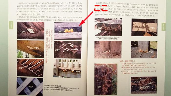 「木製外構材のメンテナンスマニュアル」P16~P17を撮影した写真画像