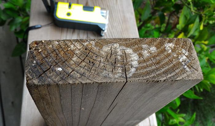 一回目塗布後の1Fウッドデッキ上の椅子(ベンチ)の脚の裏のカビの様子を撮影した写真画像