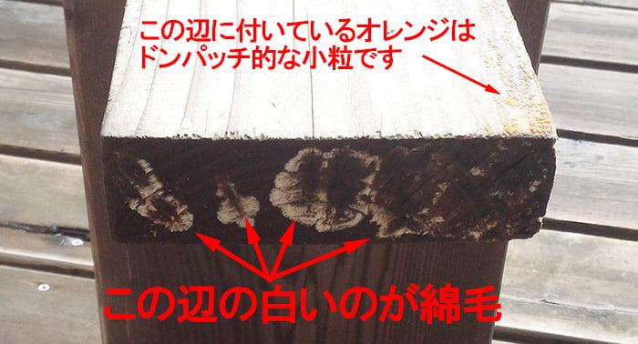 カビと思われる綿毛が発見された椅子(ベンチ)の脚の裏を撮影した写真画像