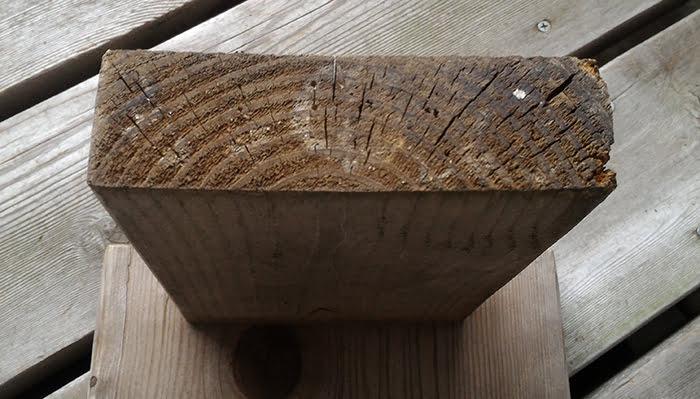 二回目塗布後の1Fウッドデッキ上の椅子(ベンチ)脚裏の、カビの可能性が高い「綿毛」の様子を撮影した写真画像