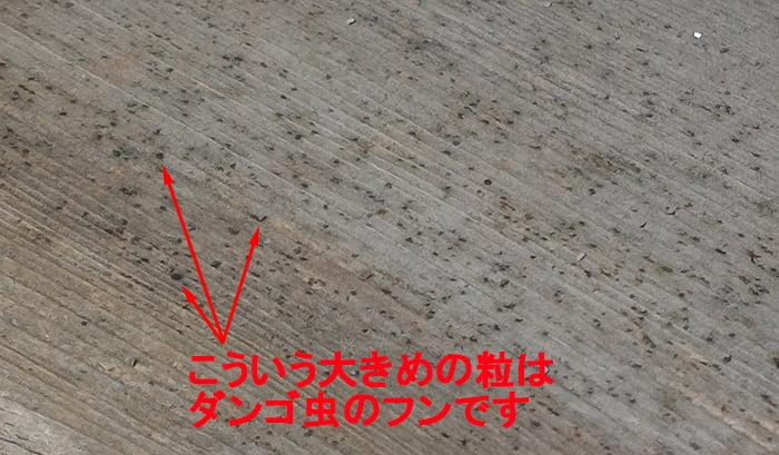 200814現在の1Fデッキ床面の様子を撮影した写真画像