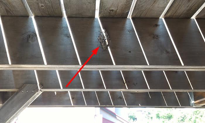 上下左右対称の「何か」の様子を撮影した写真画像02(拡大1)