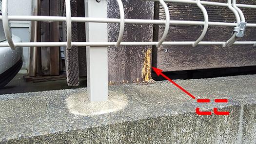 シロアリ(白蟻)発見個所:蟻道をほじくってしまった後の写真画像 ※木肌が出ている部分が表面的なシロアリ被害箇所