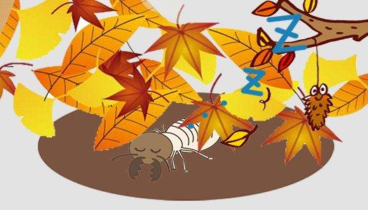 挿絵:シロアリの越冬のイメージイラスト画像 ※シロアリ(白蟻)生態解説写真1