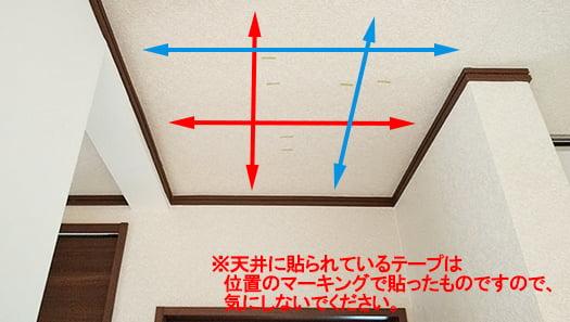 天井写真にズラした位置での追加走査イメージを書き込んだ写真画像