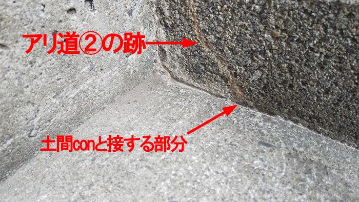 アリ道②撤去&掃除後の様子を撮影した解説コメント入り写真画像 ※シロアリの巣の見直し分析&検証画像10