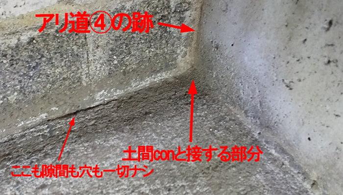 アリ道④撤去&掃除後を拡大撮影した解説コメント入り写真画像 ※シロアリの巣の見直し分析&検証画像13