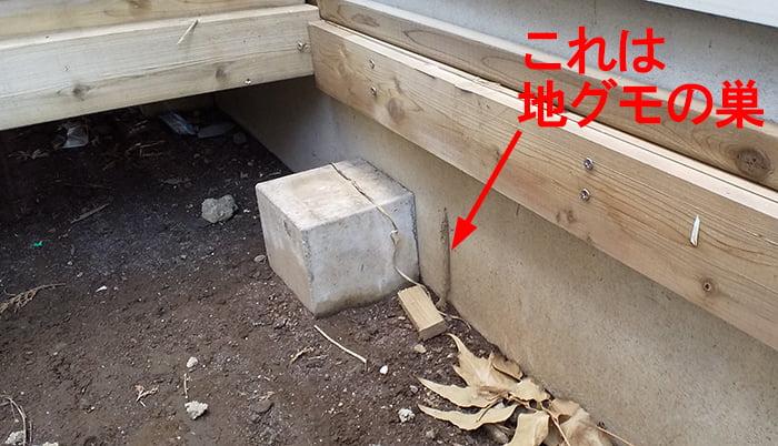 シロアリ(白蟻)のアリ道(蟻道)と紛らわしい例として地グモの巣を撮影した写真画像 ※シロアリ被害の見つけ方解説用画像3