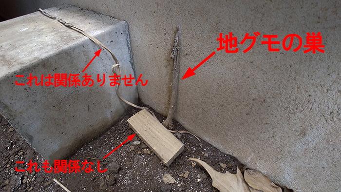 紛らわしい例として紹介した地グモの巣を拡大した写真画像 ※シロアリ被害の見つけ方解説用画像4