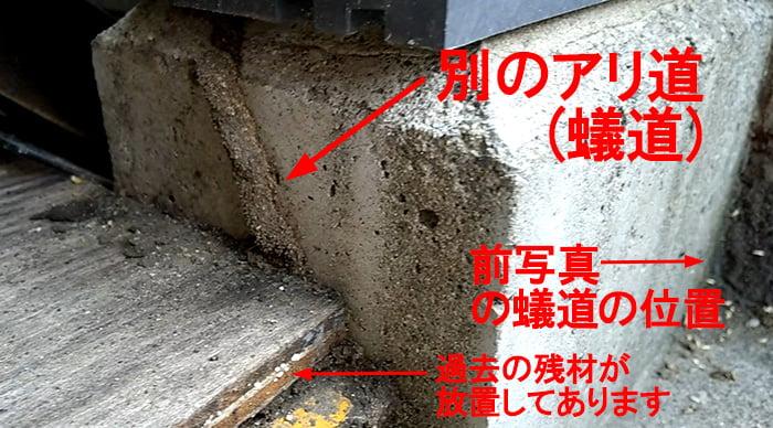 アリ道③(三本目の蟻道)を撮影した写真画像(解説用コメント入り) ※シロアリの巣の見直し分析&検証画像6