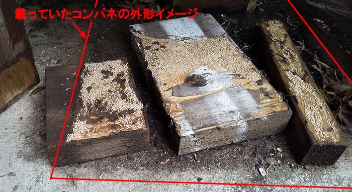 載っていたコンパネの外形イメージを先の端材を侵すヤマトシロアリ写真に図示した写真画像 ※シロアリの巣の見直し分析&検証画像26