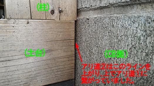 シロアリ被害部分の裏面のCB面との隙間を撮影した写真画像 (別の投稿で使った写真につき、コメントが入っていますが、ここではあまり関係ありません) ※シロアリ駆除剤シロアリジェットプロ隙間ノズル解説用写真