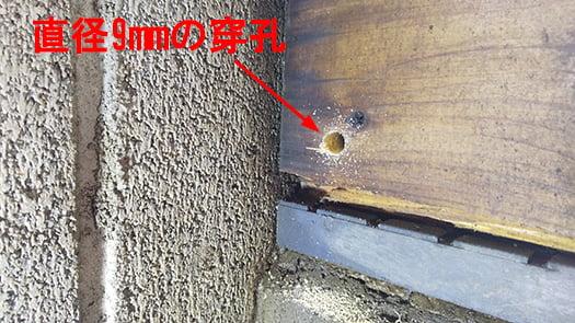 シロアリ被害部直上の土台への穿孔により孔いた直径9mmの穴を撮影した写真画像