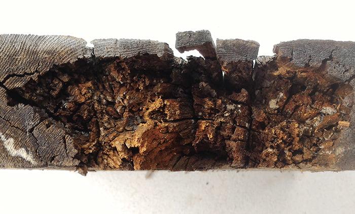 WRC材に見られる褐色腐朽菌によるものと思われる腐朽を撮影した写真画像