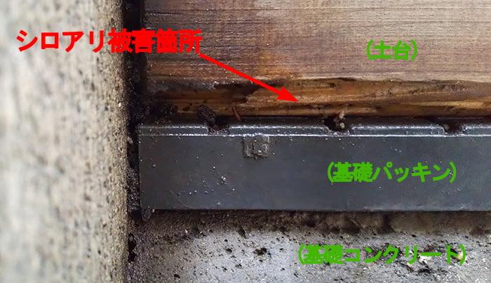 シロアリ被害箇所の左端の様子を撮影した写真画像 ※白蟻による被害(シロアリ被害)の解説用写真画像3