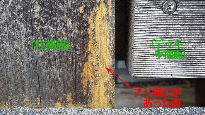 シロアリ被害箇所廻り:柱の隣地面(アリ道①の発見箇所)の外観を撮影した写真画像