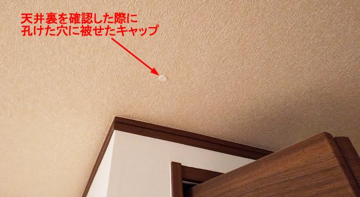 天井裏を確認した際に孔けた穴に被せたキャップを撮影した写真画像