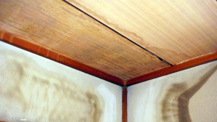 とある和室天井周りの雨漏り跡を撮影した写真画像 ※風災での損傷に起因する雨漏りであれば、火災保険でのリフォーム(修繕)が可能な例