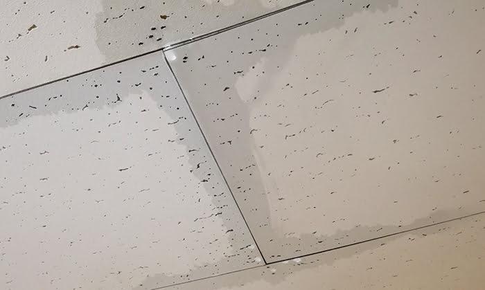 とあるお宅の天井からの雨漏りを撮影した写真画像(フォトACさん提供)