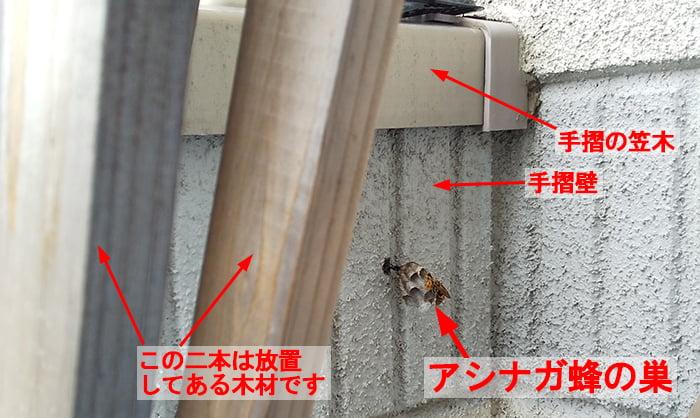 2021年5月②のアシナガ蜂の巣を撮影したコメント入り写真画像(斜め中景:発見時の現場) ※ハッカ油によるアシナガバチ追い出し作戦①の戦場