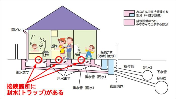 横浜市下水道パンフからの引用した分流の場合の下水道のしくみ解説画像に封水(トラップ)の位置イメージを書き込んだ解説コメント入りイラスト画像 ※アミメニシキヘビはいつ、どこから屋根裏に戻った?検証&解説画像33