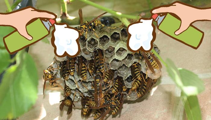 挿絵:ハッカ油スプレーを下向きで蜂の巣に噴射するイメージを表現した写真+イラスト複合画像(写真はアシナガ蜂の巣)