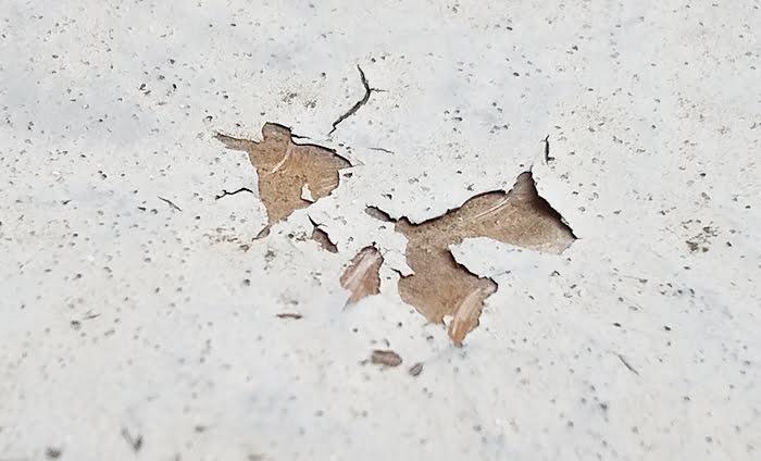 ベランダ床の防水面の保護塗料の剥がれを撮影した写真画像:接写(筆者の建売マイホームのバルコニー床にて撮影)