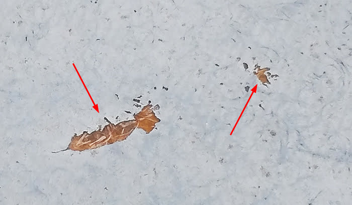 挿絵:筆者の建売マイホームFRP防水保護塗料(トップコート)の剥がれを撮影したコメント入り写真画像